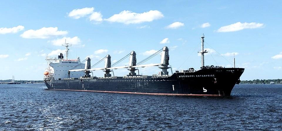Seabulk Dry Bulk Fleet Info 960x447