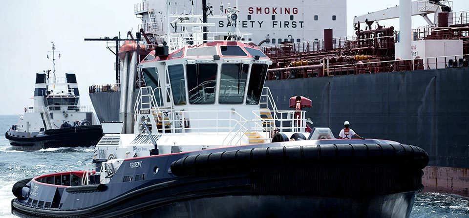 Seabulk Port Services 960x447 Q50